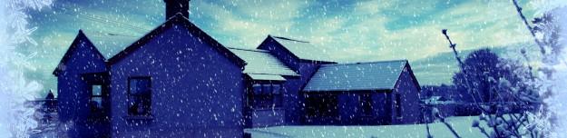 snowy card